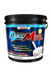 Allmax quickmass loaded гейнер с протеин на цена 99 лв.